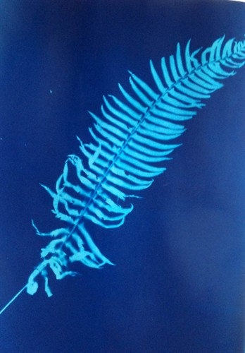 Annabel Dover